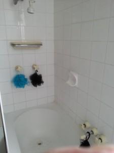 Domestic Plus Cleaners Brisbane Before