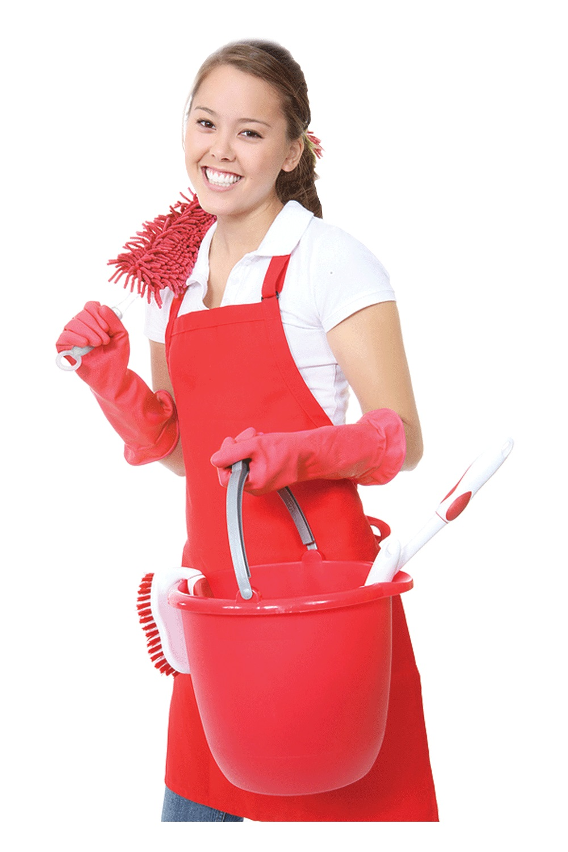 Domestics Plus QLD Regular Clean