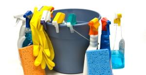 Domestics Plus Spring Cleans